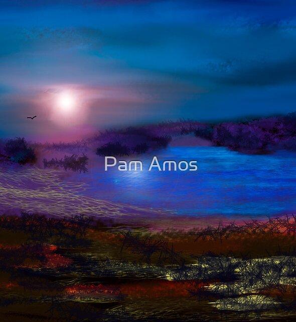 Moonlight by Pam Amos