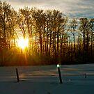 Winter Sunset in Alberta, Canada by Jessica Chirino Karran