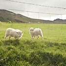 ewe and I by helveticaneue