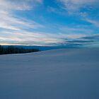 Serene Scene - Winter in Alberta Canada by Jessica Chirino Karran