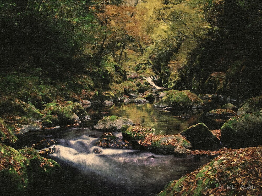 hidden creek of mystic forest by MotionAge Media
