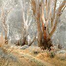 Swan Hill Gums by Mick Kupresanin