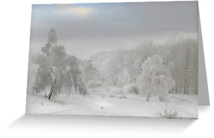 White Trees by Igor Zenin