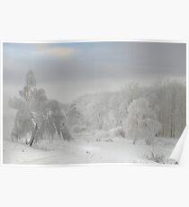 White Trees Poster