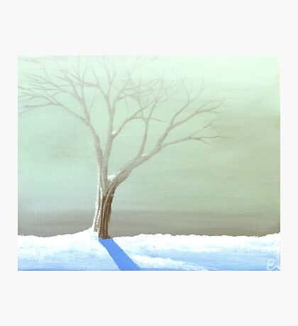 A Frosty Fog Photographic Print