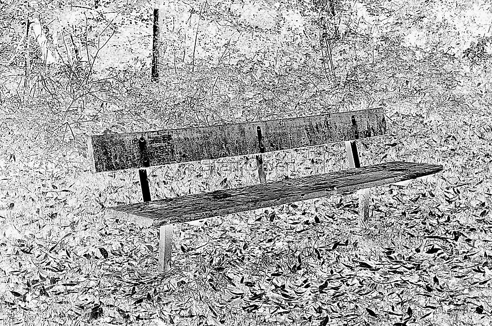 Old Bench by Stan Owen