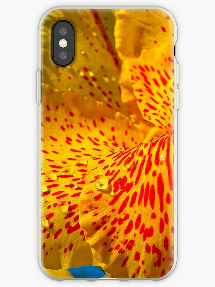 The Water Drops On A Lily I-Phone Case by Jim Haley