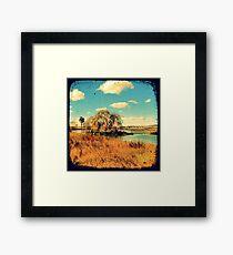 Dangars Lagoon Willow - Through The Viewfinder (TTV) Framed Print