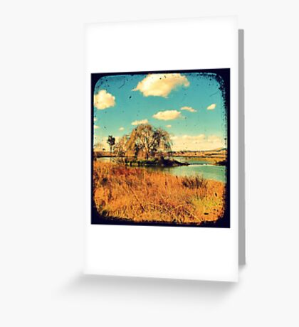 Dangars Lagoon Willow - Through The Viewfinder (TTV) Greeting Card