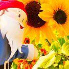 Sunny Gus by DustysGnomes