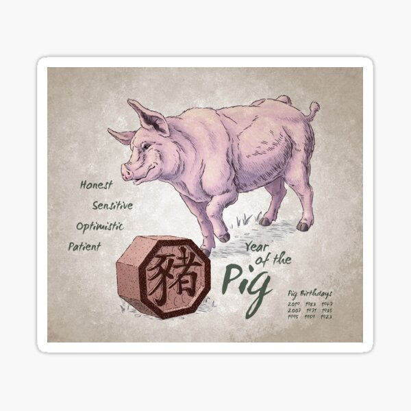 Year of the Pig Calendar (white) Sticker