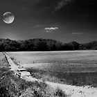 Lovers Lane When everything was black n white by Randy Branham