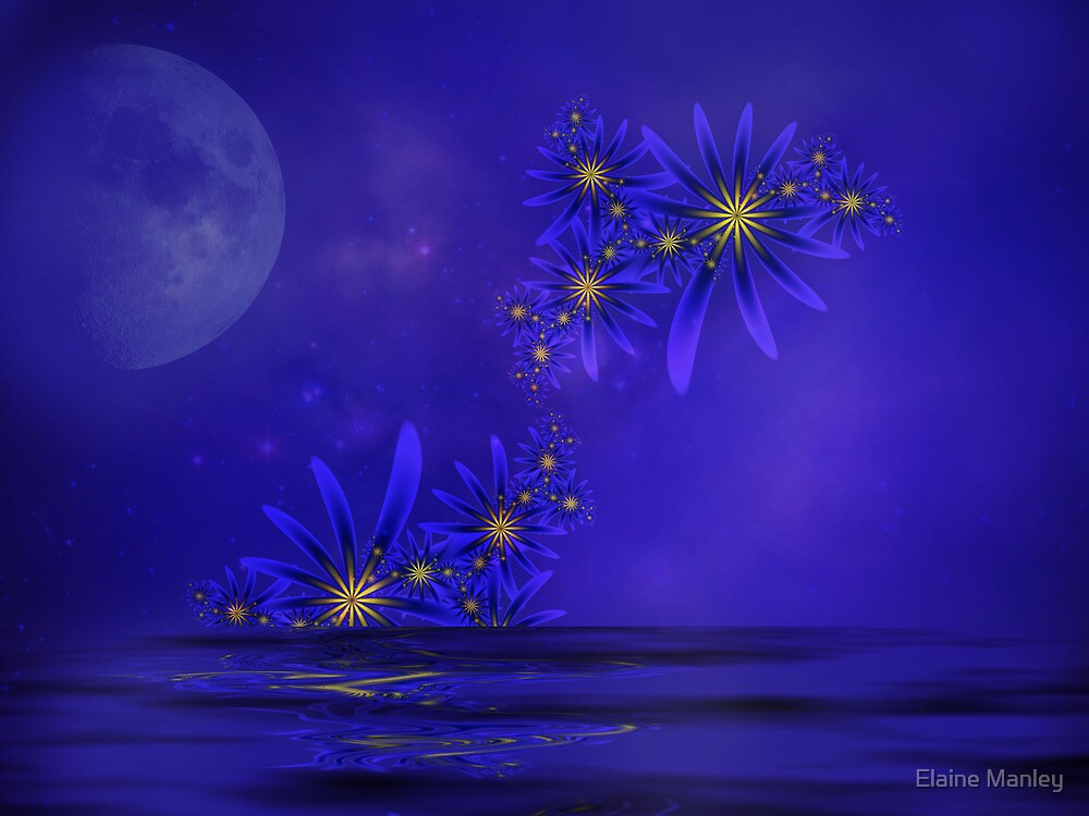 Blue Moon  by Elaine Manley
