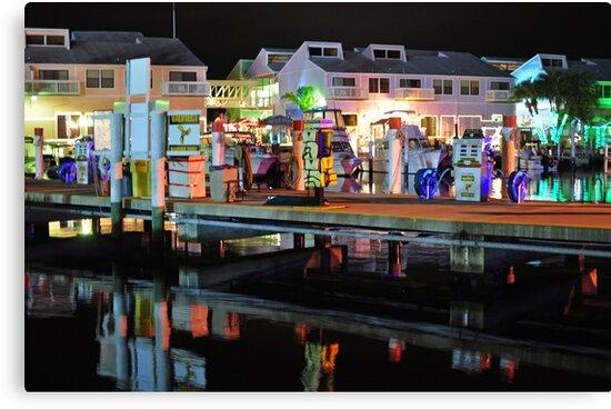 Dockside Punta Gorda  by John  Kapusta