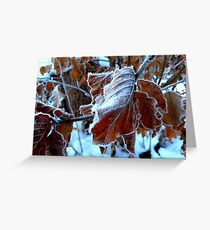 Frost Crystals Greeting Card