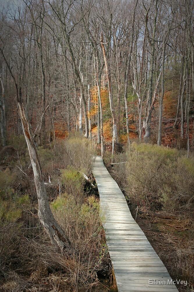 The Boardwalk by Eileen McVey