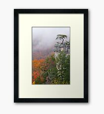 Buzzards Roost Framed Print