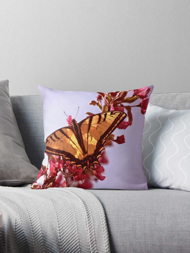 Tiger Swallowtail with CrabApple Blossoms by Arla M. Ruggles