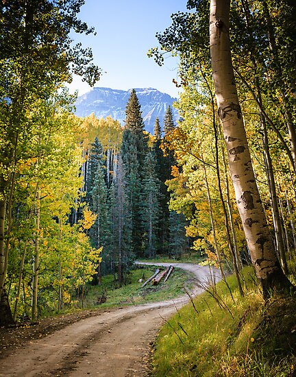 Autumn Road by Gary Gray