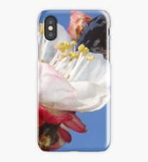 Apricot Blossom iPhone Case