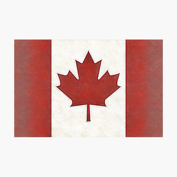 Canadian Maple Leaf Photographic Print