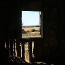 ROOM WITH A VIEW by Debra LINKEVICS