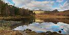 Blea Tarn-Fence End by Jamie  Green