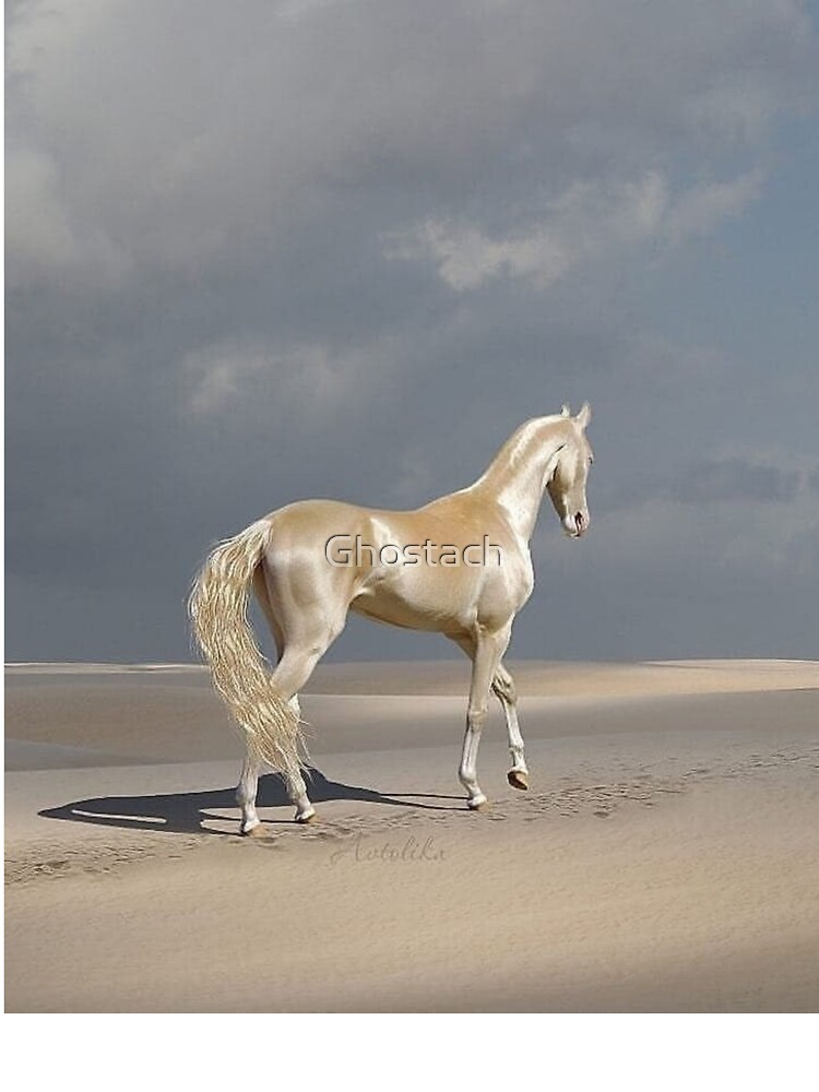 White Arabian Horse Baby One Piece By Ghostach Redbubble