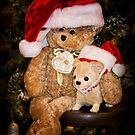 Bear Stories:  Have a Beary Merry Christmas by Corri Gryting Gutzman