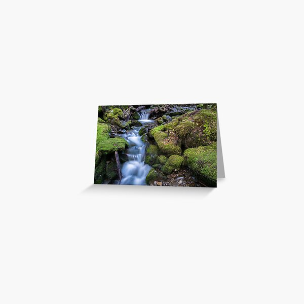 Little Fisher River, Tasmania Greeting Card
