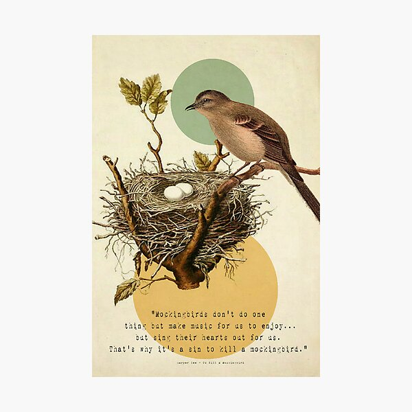 To Kill A Mockingbird Photographic Print