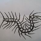 Tatto - centipede by S S.