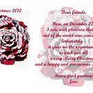 Merry Christmas by imagic