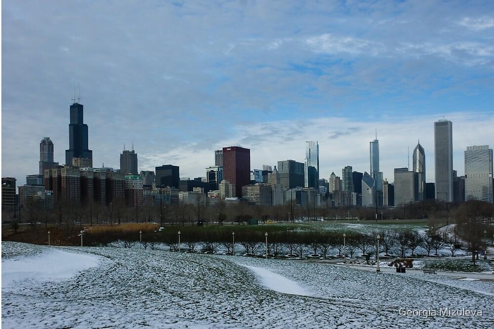 Wintry Windy City Skyline - Chicago, Illinois, USA by Georgia Mizuleva