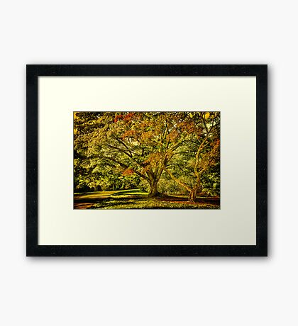 Осеннее свидание or When Summer meet Fall . Framed Print