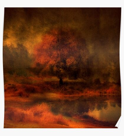 Reflections Under a Copper Sky Poster