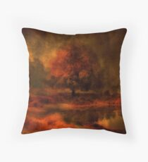 Reflections Under a Copper Sky Throw Pillow