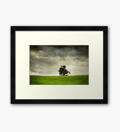 The Lone Tree Framed Print