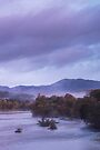 Mist on the River Tummel by Cliff Williams
