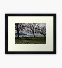 Hidden In The Trees Framed Print