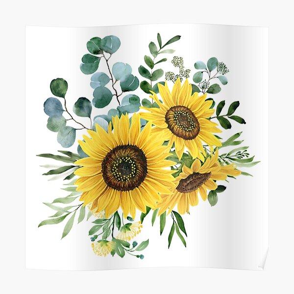 Sunflower and Eucalyptus  Poster