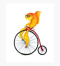 Penny Farthing Fish Photographic Print
