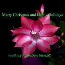 Merry Christmas - Happy Holidays by MaryinMaine