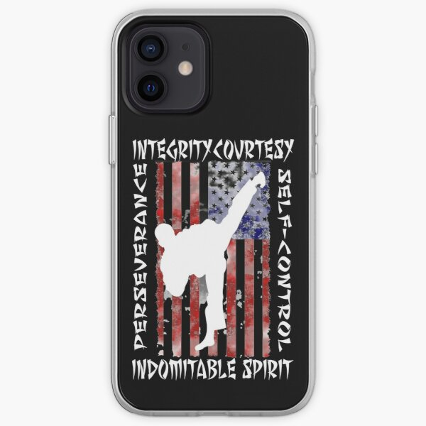 American Martial Arts 5 Tenates of Taekwondo iPhone Soft Case