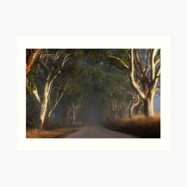 ~ The Road II ~ Art Print