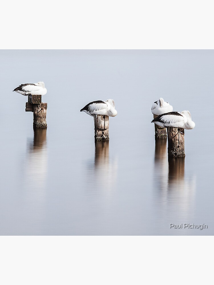 Stillness by paulmp