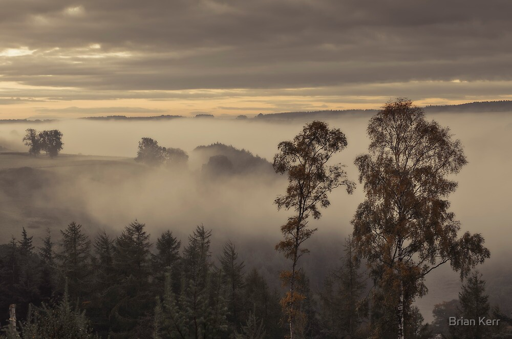 A Misty Eden Valley by Brian Kerr