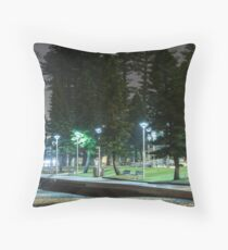 23rd December 2012 Throw Pillow