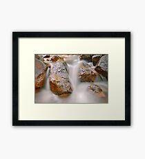 Fabric of nature Framed Print