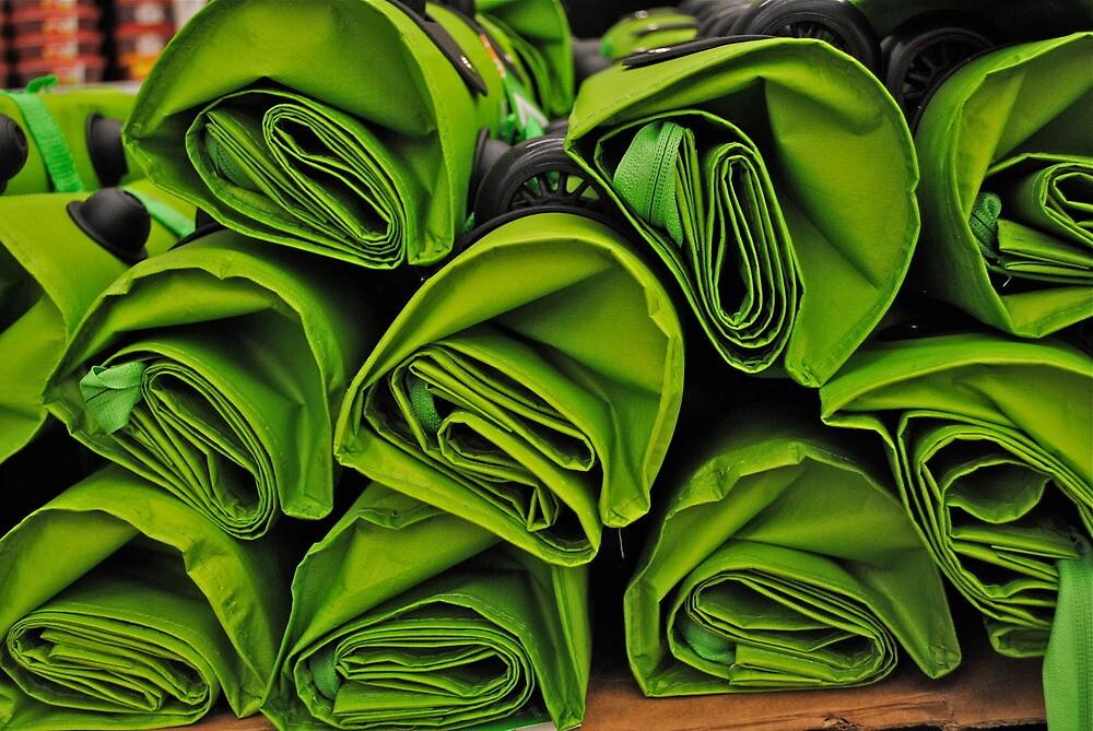 Green Bags by richard  webb